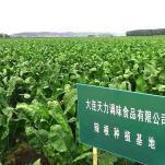 辽南万博手机版官网登录网页种植基地